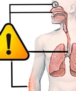 Alergias - Problemas Respiratorios